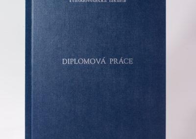 Kniharstvi_Rak_diplomove_prace_22