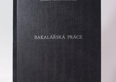 Kniharstvi_Rak_diplomove_prace_24